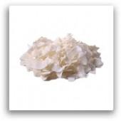 Cocos fulgi deshidratat (fara zahar) 250g